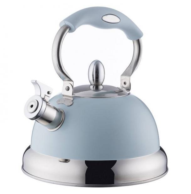 Чайник со свистком Typhoon Living голубой