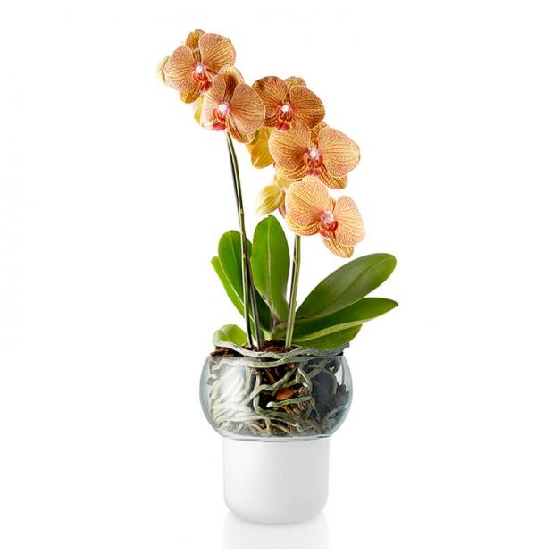 Самополивающий горшок для орхидеи Eva Solo Orchid Pot Self-Watering D13