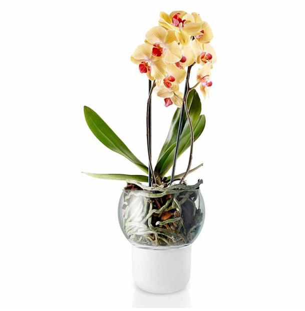 Самополивающий горшок для орхидеи Eva Solo Orchid Pot Self-Watering D15