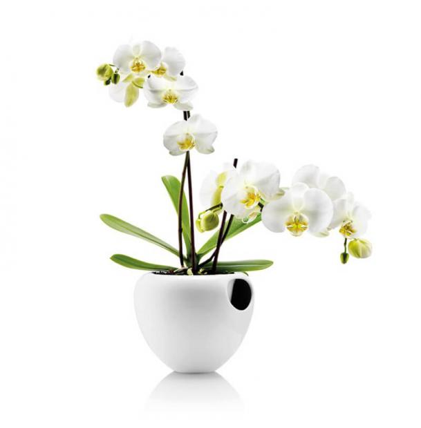 Горшок для орхидеи Eva Solo Orchid Pot White