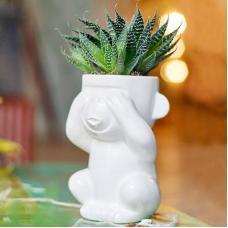 Горшок для растений Экочеловеки Eco Слепыш