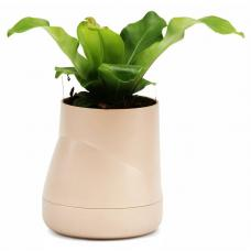 Горшок цветочный Qualy Hill Pot, большой, кремовый