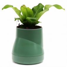 Горшок цветочный Qualy Hill Pot, большой, зеленый