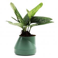 Горшок цветочный Qualy Hill Pot, маленький, зеленый