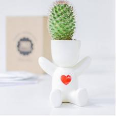 Набор для выращивания Экочеловеки Eco Малыш с сердечком