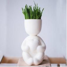 Набор для выращивания Экочеловеки Eco Романтик