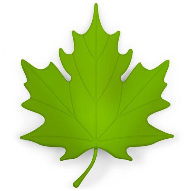 Подпорка для двери Qualy Autumn зеленая